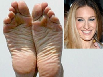 Worst celebrity toes srs pics lulz bodybuilding com forums