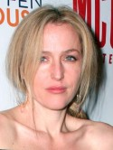 Gillian Anderson: I turned down role in Downton Abbey - I prefer to play The Fall's sexy detective