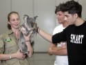 One Direction cuddle up to cute koala in Australia