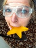 Helen Flanagan 'so proud ' after sticking head in boxes of bugs to win first Bushtucker Trial on I'm A Celebrity