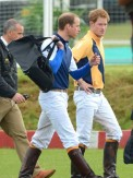 Prince William and Prince Harry | Beaufort Polo Club | Pictures | Photos | New | Celebrity News